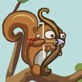 Difendi i tuoi Nuts